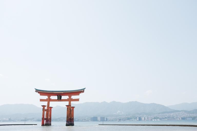 OPERATION_SAKURA-2017-266